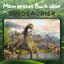 Mein erstes Buch über Dinosaurier von Hübsch,  Bibi