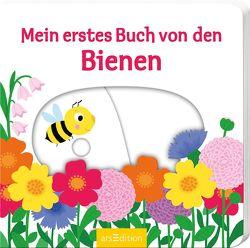 Mein erstes Buch von den Bienen von Choux,  Nathalie