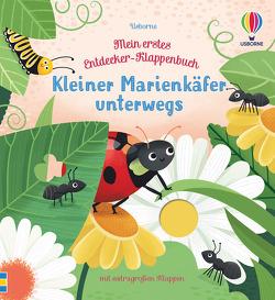 Mein erstes Entdecker-Klappenbuch: Kleiner Marienkäfer unterwegs von Allen,  Sarah, Milbourne,  Anna