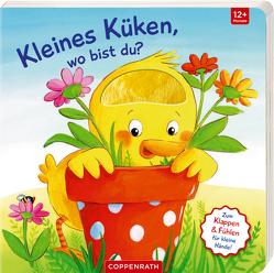 Mein erstes Gucklock-Fühlbuch: Kleines Küken, wo bist du? von Kraushaar,  Sabine