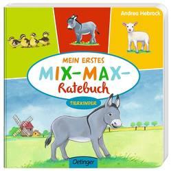 Mein erstes Mix-Max-Ratebuch Tierkinder von Hebrock,  Andrea, Vogt,  Stefanie