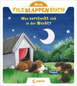 Mein Filzklappenbuch – Was versteckt sich in der Nacht? von Flad,  Antje