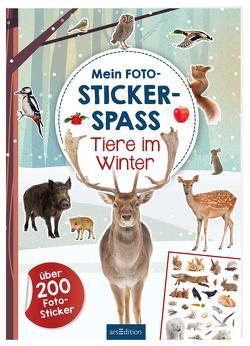 Mein Foto-Stickerspaß – Tiere im Winter von Schindler,  Eva