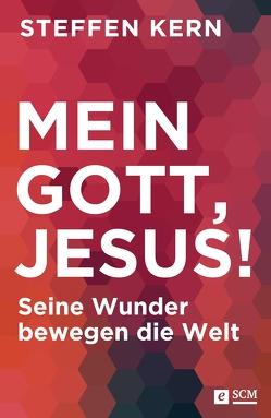 Mein Gott, Jesus! von Kern,  Steffen