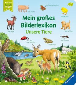 Mein großes Bilderlexikon: Unsere Tiere von Ebert,  Anne, Gernhäuser,  Susanne