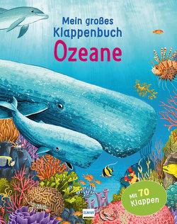 Mein großes Klappenbuch – Ozeane von Bernstein,  Galia, Ganeri,  Anita