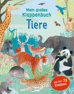 Mein großes Klappenbuch – Tiere von Bowles,  Anna, Rewse,  Katie