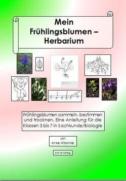 Mein Herbarium der Frühlingsblumen von Nitschke,  Anke