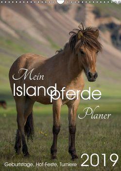 Mein ISLANDPFERDE Planer – Geburtstage, Hof-Feste, Turniere (Wandkalender 2019 DIN A3 hoch) von van der Wiel www.kalender-atelier.de,  Irma