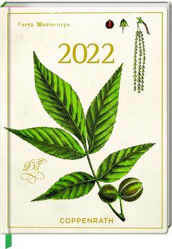 Mein Jahr 2022 – Hickory (Sammlung Augustina)