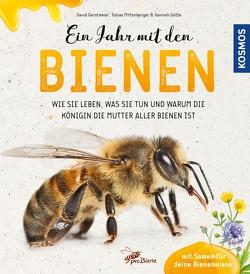 Mein Jahr mit den Bienen von Gerstmeier,  David, Miltenberger,  Tobias