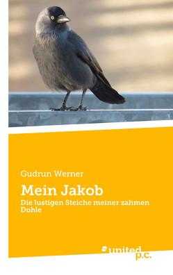 Mein Jakob von Werner,  Gudrun