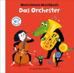 Mein kleines Musikbuch – Das Orchester von Roederer,  Charlotte