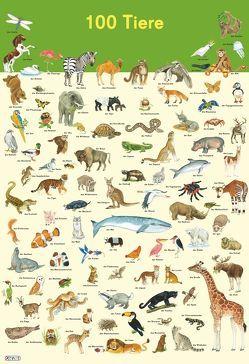 Mein Lernposter: VE 5 100 Tiere