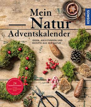 Mein Natur-Adventskalender 2021 von Rogge,  Anne