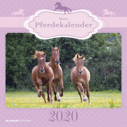Mein Pferdekalender 2020 – Broschürenkalender (30 x 60 geöffnet) – Wandkalender – Tierkalender – Wandplaner von ALPHA EDITION