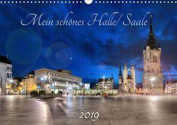 Mein schönes Halle/ Saale 2019 (Wandkalender 2019 DIN A3 quer) von Friebel,  Oliver