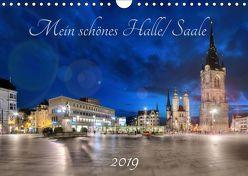 Mein schönes Halle/ Saale 2019 (Wandkalender 2019 DIN A4 quer) von Friebel,  Oliver