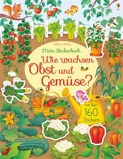 Mein Stickerbuch: Wie wachsen Obst und Gemüse? von Iossa,  Federica, Watson,  Hannah