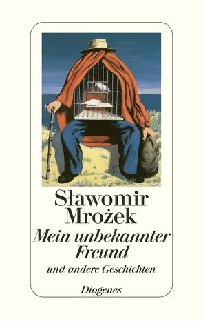 Mein unbekannter Freund von Mrozek,  Slawomir, Schwanetzkij,  Michail
