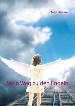 Mein Weg zu den Engeln von Driemel,  Katja