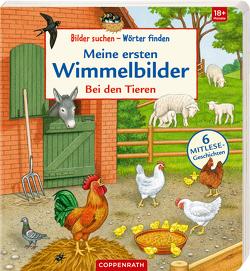 Meine ersten Wimmelbilder von Brauer,  Sybille, Döring,  Hans Günther