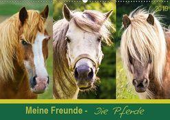 Meine Freunde – die Pferde (Wandkalender 2019 DIN A2 quer) von DESIGN Photo + PhotoArt,  AD, Dölling,  Angela