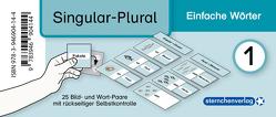 Meine Grammatikdose 1 – Singular-Plural – Einfache Wörter von Langhans,  Katrin