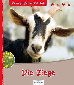 Meine große Tierbibliothek: Die Ziege von Brauner,  Anne, Noblet,  Jean