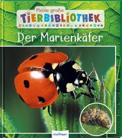 Meine große Tierbibliothek: Der Marienkäfer von Tracqui,  Valérie