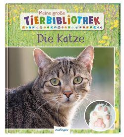 Meine große Tierbibliothek: Die Katze von Ledu-Frattini,  Stéphanie