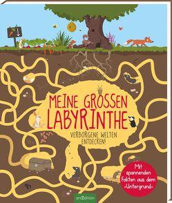Meine großen Labyrinthe von Balzeau,  Antoine, Balzeau,  Karine, Weizman,  Gal