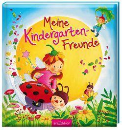 Meine Kindergarten-Freunde (Elfen und Feen) von Kraushaar,  Sabine