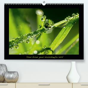 Meine kleine grüne Wassertropfen Welt (Premium, hochwertiger DIN A2 Wandkalender 2021, Kunstdruck in Hochglanz) von Siebenhühner,  Gabi