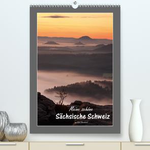 Meine schöne Sächsische Schweiz (Premium, hochwertiger DIN A2 Wandkalender 2021, Kunstdruck in Hochglanz) von Ehrentraut,  Dirk