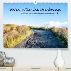 Meine schönsten Wanderwege (Premium, hochwertiger DIN A2 Wandkalender 2020, Kunstdruck in Hochglanz) von Stein,  Karin