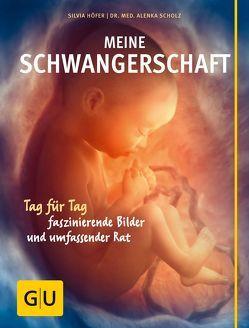 Meine Schwangerschaft von Höfer,  Silvia, Scholz,  Alenka