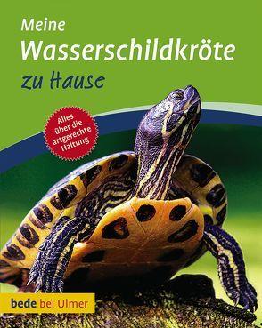 Meine Wasserschildkröte zu Hause von Gorf,  Tina, Schneider,  Eva-Grit