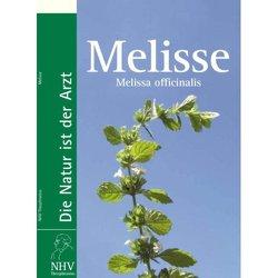 Melisse – Melissa officinalis