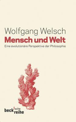 Mensch und Welt von Welsch,  Wolfgang