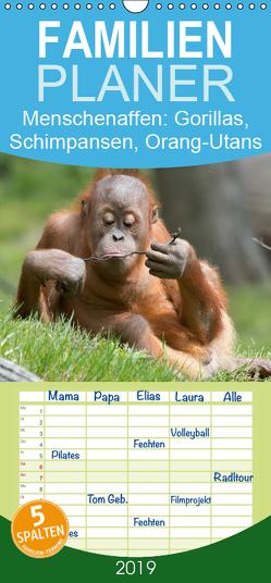 Menschenaffen. Gorillas, Schimpansen, Orang-Utans – Familienplaner hoch (Wandkalender 2019 , 21 cm x 45 cm, hoch) von Stanzer,  Elisabeth