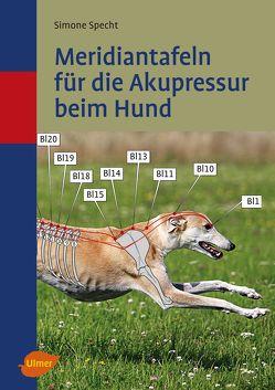 Meridiantafeln für die Akupressur beim Hund von Specht,  Simone