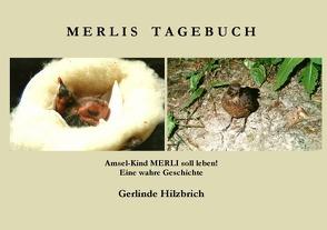Merlis Tagebuch von Hilzbrich,  Gerlinde
