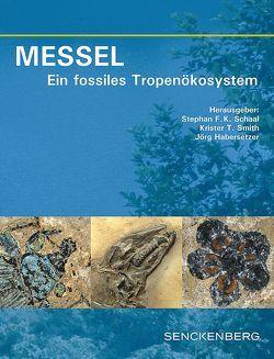 MESSEL – Ein fossiles Tropenökosystem von Habersetzer,  Jörg, Schaal,  Stephan F. K., Smith,  Krister T.