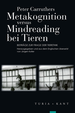 Metakognition versus Mindreading bei Tieren von Carruthers,  Peter, Koller,  Jürgen