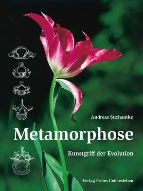 Metamorphose von Suchantke,  Andreas