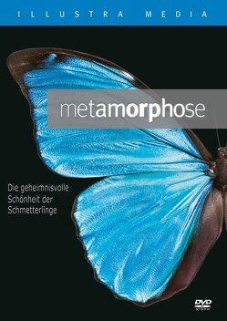 Metamorphose von Allen,  Lad