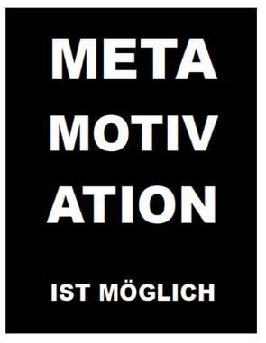 Metamotivation ist möglich von De Toys,  Tom