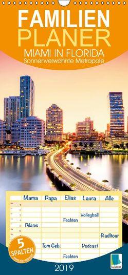 Miami in Florida: Sonnenverwöhnte Metropole (Wandkalender 2019 PRO_49_format hoch) von CALVENDO