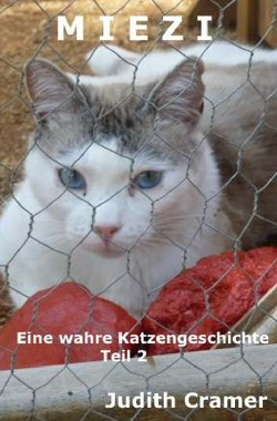 Miezi – wahre Katzengeschichten / Miezi – Eine wahre Katzengeschichte von Cramer,  Judith
